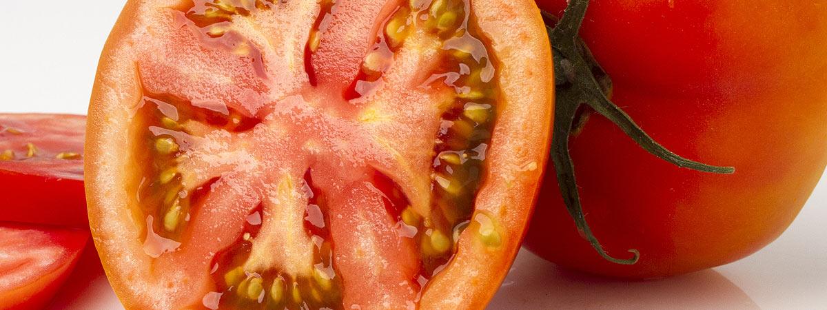 Tomates de calidad / Quality tomatoes