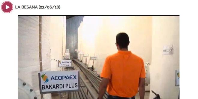 180626_Acopaex